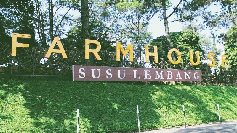 Farmhouse Susu Lembang Wisata Kuliner Edukasi Dan