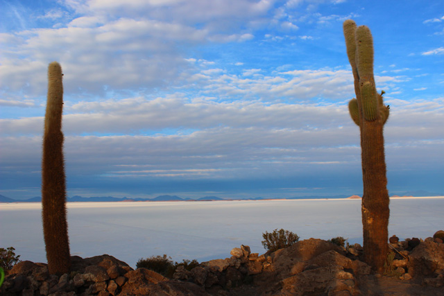 El Salar de Uyuni desde el mirador de la isla Incahuasi