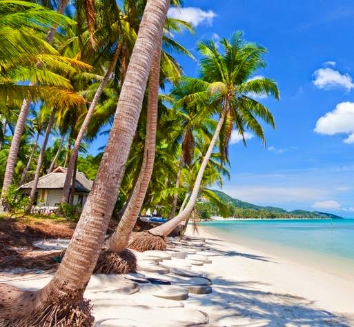 When is the best time to dive in phuket thailand charles bird - Where to dive in thailand ...