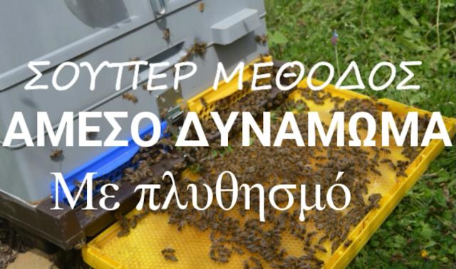 Γρήγορο δυνάμωμα μελισσιού κατευθείαν με πλυθησμό!! [video]