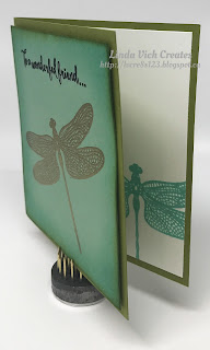 Linda Vich Creates: So Succulent Gift Set With Video Tutorial. Gift card that uses Dragonfly Dreams and coordinates with a pot of the trendy succulents.