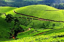 Munnar Kerala Hill Station India