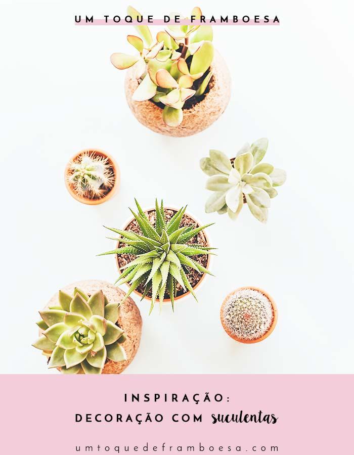 Inspire-se com fotos de suculentas na decoração de casa e dicas de como cuidar de suculentas para que elas fiquem sempre lindas