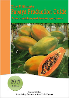 papaya farming guide kenya pdf