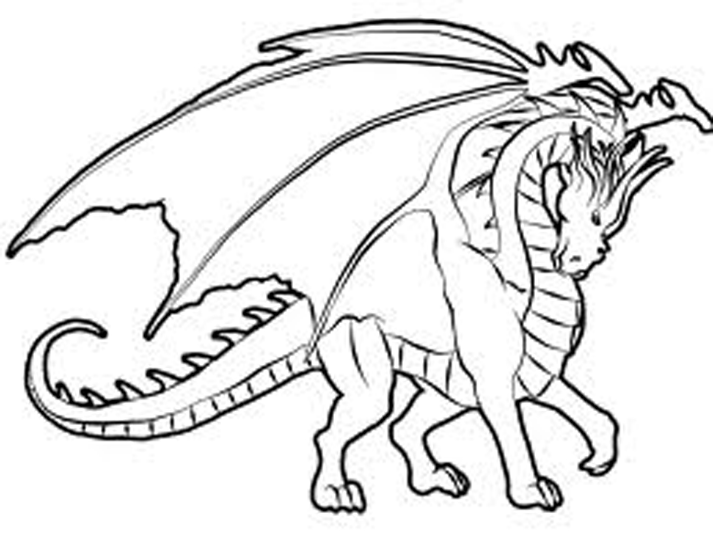 www coloring pages for kids | T-shirt logo design creative ideas: Coloring Pages For Kids
