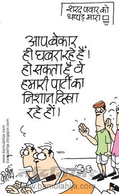 sharad Pawar cartoon, congress cartoon, indian political cartoon, corruption cartoon