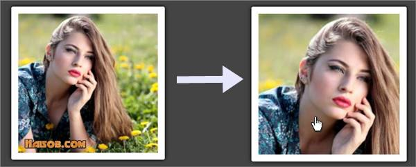Grow CSS image hover effect