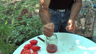Πώς Συλλέγουμε Σπόρο από τις Ντομάτες μας: Βασικές Οδηγίες Φύλαξης Σπόρωv