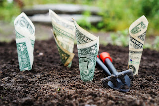 finance planting