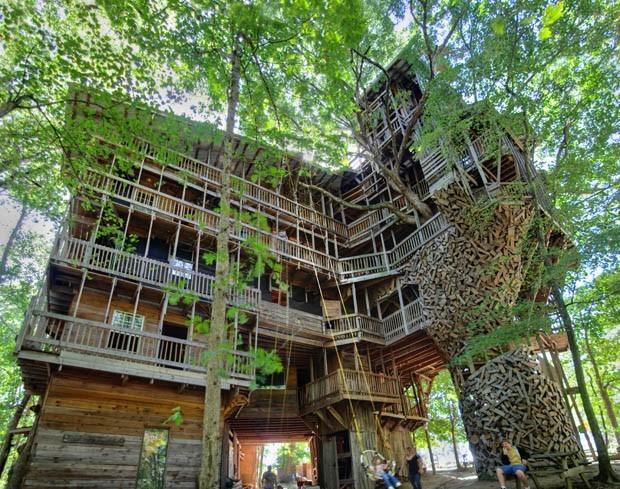 Rumah Pohon Terbesar Di Dunia 2