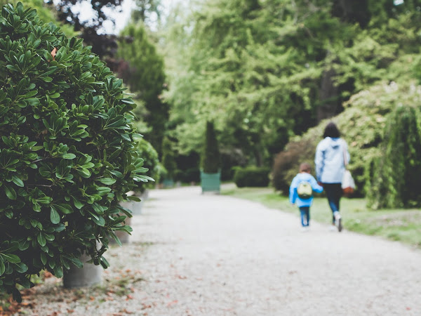The Loneliness of Mothering a Gifted Child (Learning when to Advocate)