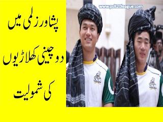 psl-2017-champions-peshawar-zalmi.html