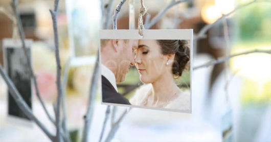 VideoHive Photo Gallery at a Country Wedding - Adobe After Effect Template