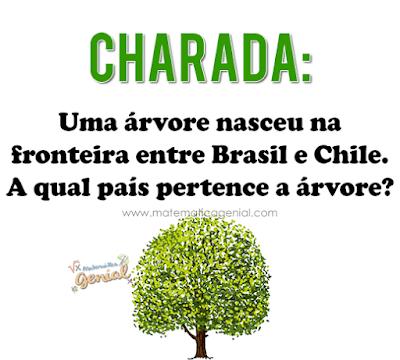 Charada: Uma árvore nasceu na fronteira entre Brasil e Chile...