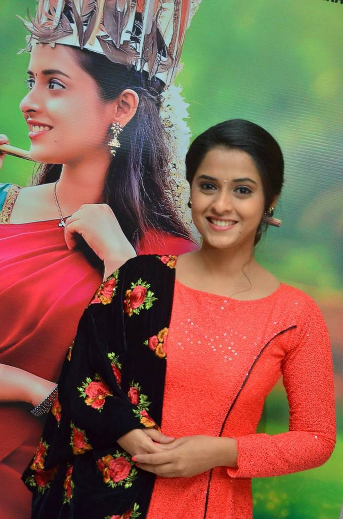 Actress Arthana At Sema Audio Launch Gallery