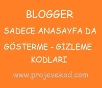 Blogger Sadece Anasayfada Gösterme - Gizleme Kodları