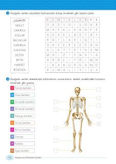 6. Sınıf Din Kültürü  ve Ahlak Bilgisi Ders Kitabı Cevapları Gün Sayfa 10