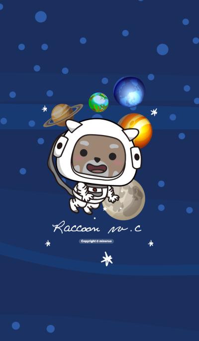Raccoon w.c (cosmos)