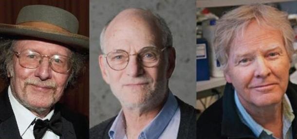 Medicina: il Premio Nobel 2017 a Hall, Rosbash e Young per le scoperte sul ritmo circadiano
