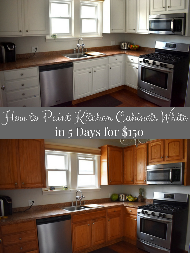 How to Paint Kitchen Cabinets White in 5 Days for $150 | The ...