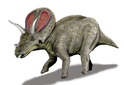 Torosaurus | facts | size