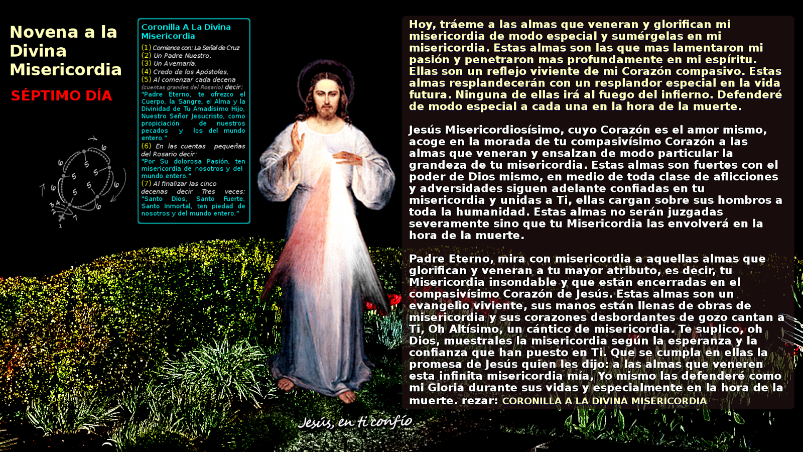 SÉPTIMO DÍA de la novena a la divina misericordia