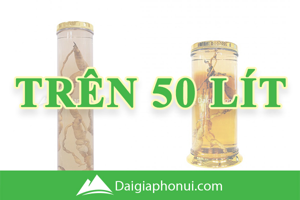 Bình Ngâm Rượu Hàn Quốc (Yongcheon Glass) Trên 50 Lít - Dai Gia Pho Nui