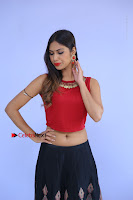 Telugu Actress Nishi Ganda Stills in Red Blouse and Black Skirt at Tik Tak Telugu Movie Audio Launch .COM 0024.JPG