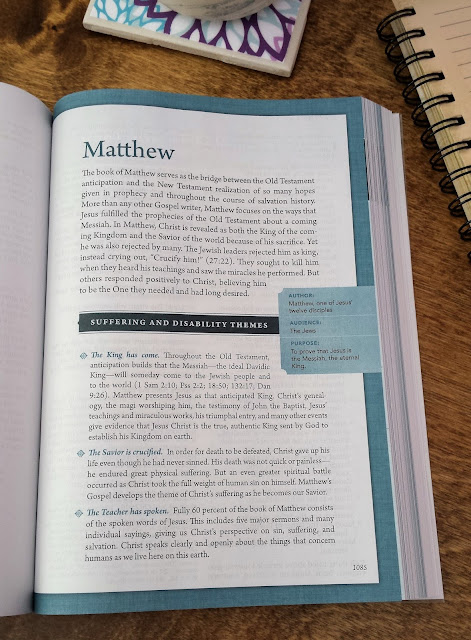 overview of the book of Matthew in the Beyond Suffering Bible