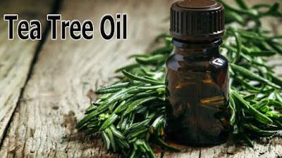 Tea Tree Oil For Wisdom Tooth Pain
