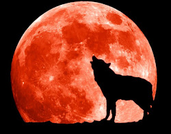 wolf moon wallpapers funmozar amazing