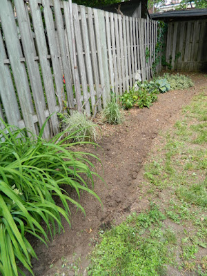 High Park North Backyard Perennial Garden Installation After by Paul Jung Gardening Services--a Toronto Gardening Company