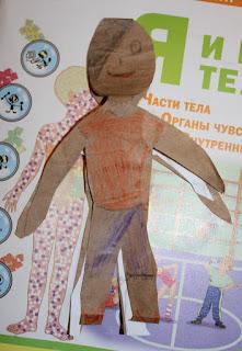 анатомия для детей