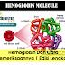 Hemoglobin Dan Cara Pemeriksaannya | Edisi Lengkap ; Seri Edukasi Teknologi Laboratorium Medik
