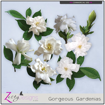 https://www.digitalscrapbookingstudio.com/commercial-use/elements/cu-gorgeous-gardenias/