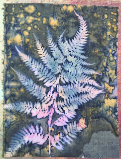 Wet cyanotype, Sue Reno, Image 11