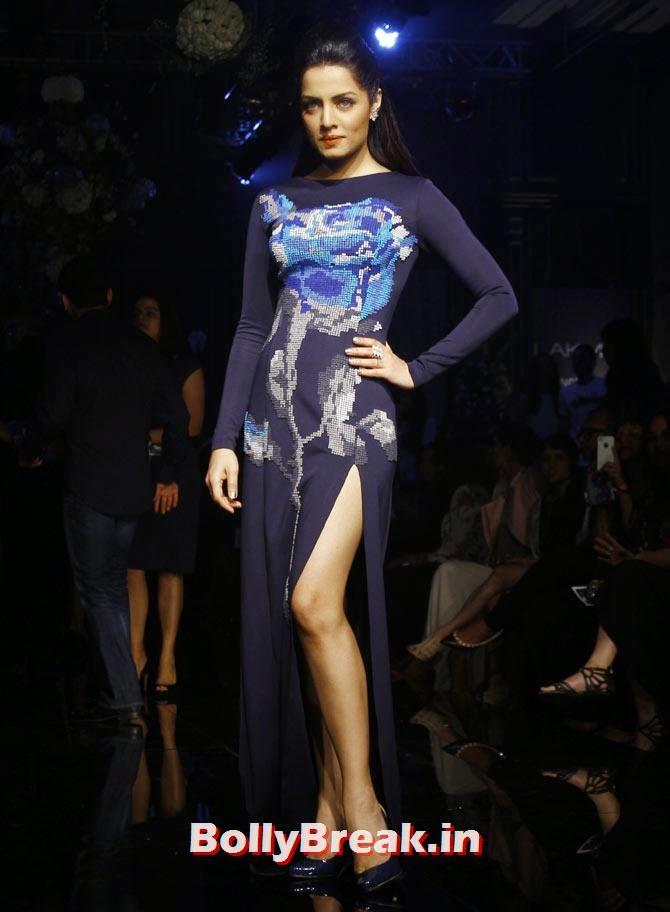 Celina Jaitly, LFW 2014 Pics  - Lakme Fashion Week 2014 Photo Gallery