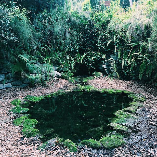 bok tower gardens, Lauren Banawa, small pond, florida scenery, lake wales