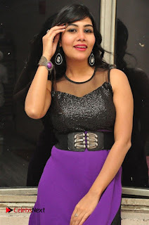 Telugu Actress Rachana Smith Stills at Money is Honey Audio Release  0008.jpg