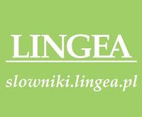 www.slowniki.lingea.pl