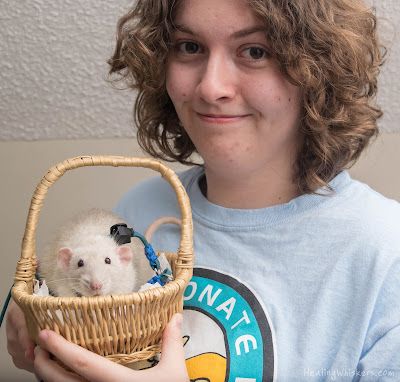Abby Chesnut and Oliver the Therapy Rat from Healing Whiskers