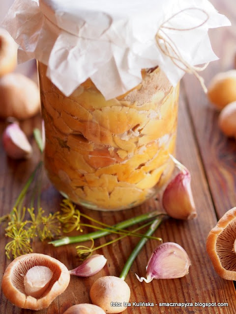 grzyby, przetwory, kiszonki, plachetka zwyczajna, kolpakowata, turki, kolpaki, plachetki, grzybobranie