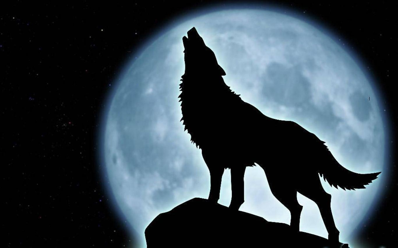 Rüyada Canavar Görmek Ne Anlama Gelir