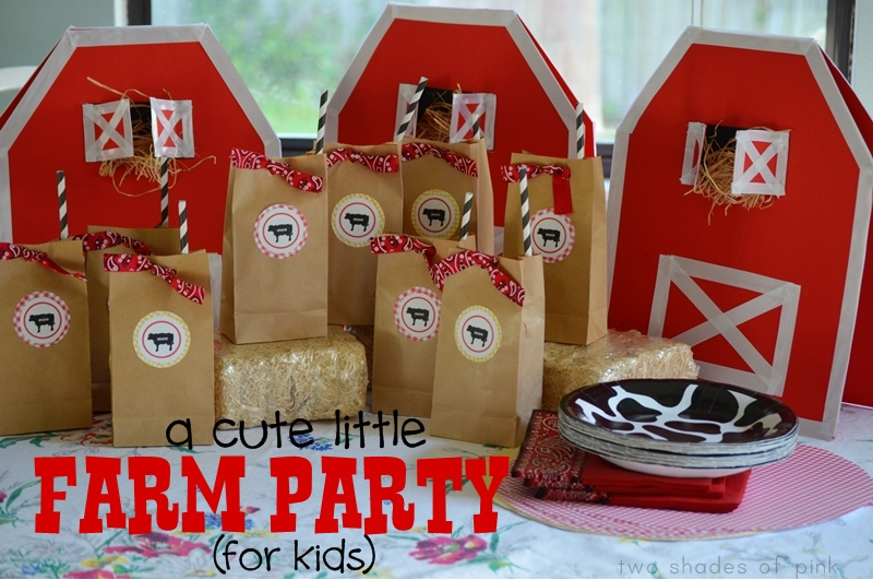 Two Shades of Pink: DIY Farm Party for Kids