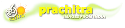 Prachitra