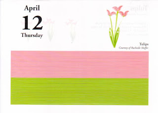 2007 Calendar Quilling Design A Day Amazon Customer Reviews Quilling Design A Day 2007 Rachielles Quilling And Other Creative Pursuits