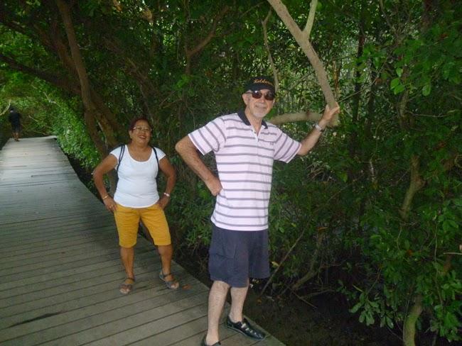 Descanso en los manglares