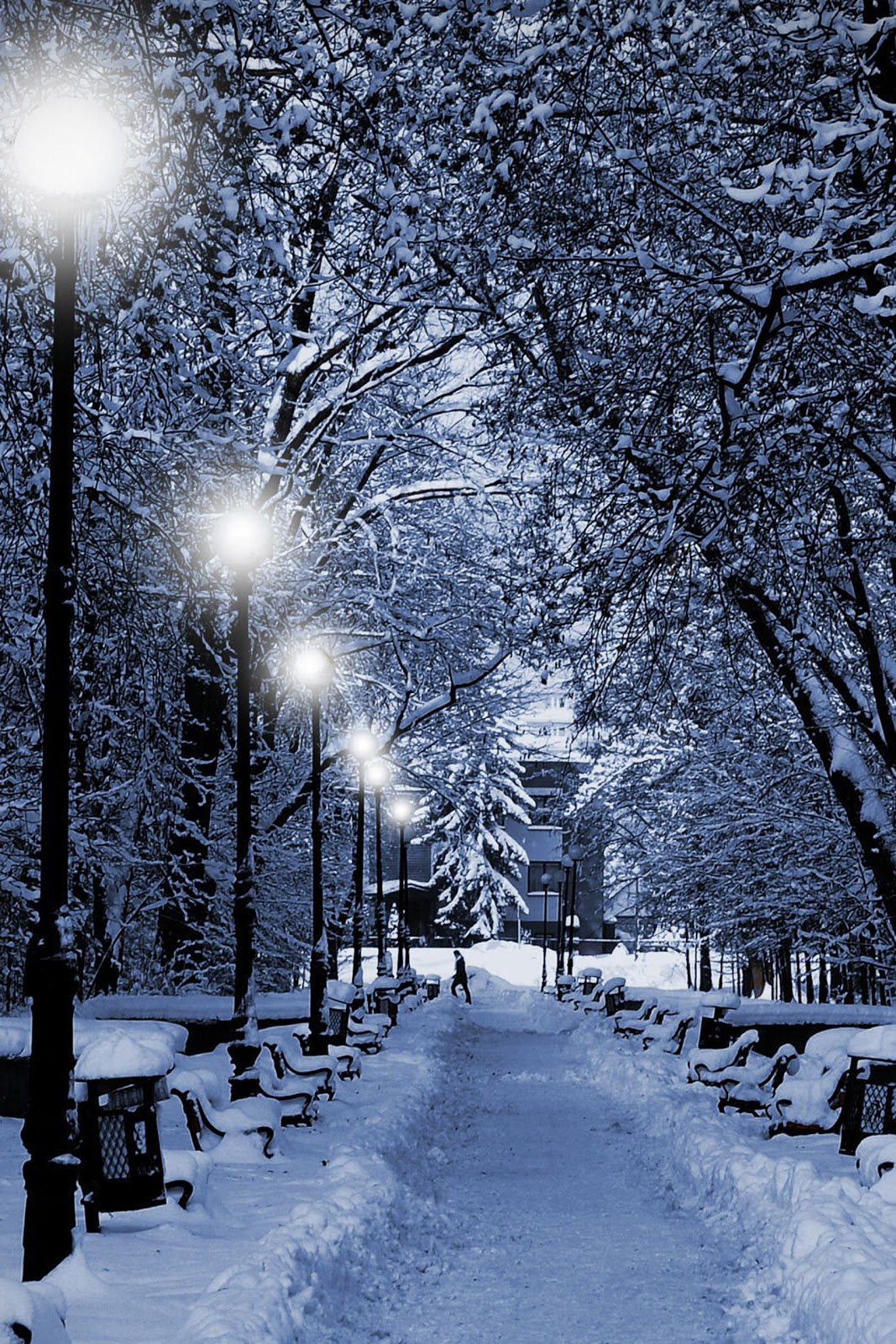 Christmas ipod wallpapers - Pretty christmas pictures ...
