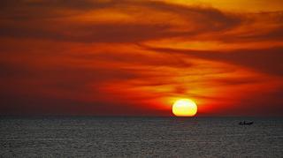 Image result for plastica linea de horizonte