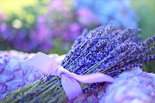 allergy remedies